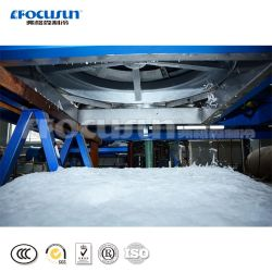 Block/Tube/Flake/Cube/Plate/Slurry Ice Maker/Ice Making Machinery/Ice Machine