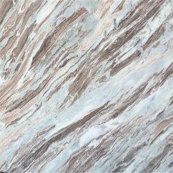 Wonderful China Sliver Dragon Marble Slabs Stone
