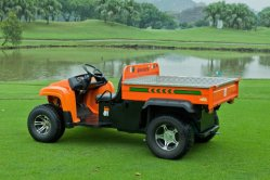 Durable off Road All-Terrian UTV Electric Vehicle