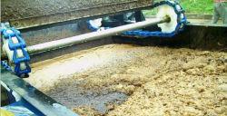 Daf Dissolved Air Flotation System for Sewage Treatment