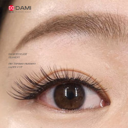 PBT Soft Tapered Artificial False Eyelash Filaments