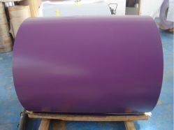 Prepainted Steel Coil/Strip PPGI/PPGL Color Coated Galvanized Steel Sheet