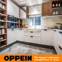 Oppein Interior Design White Thermofoil Popular Flat Pack Kitchen Cabinets  (PJCC17007)