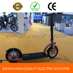 300W Electric Powerboard Scooter with Ce RoHS Certificate for Teenagers