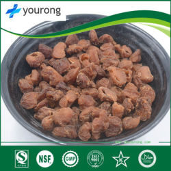 Longan Extract, a Traditional Chinese Medicine with a Long History, Glucose, Sucrose