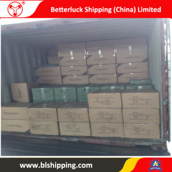 China to Taupo (New Zealand) Shipping Freight Forwarder Logistics