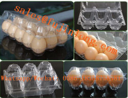 Fully Automatic Thermoforming Machine for Plastic Egg Trays