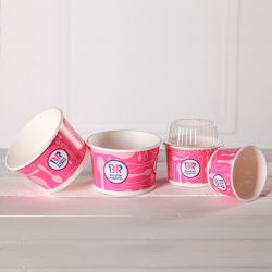 Ice Cream Spoon and Cup Paper Tubs Tube