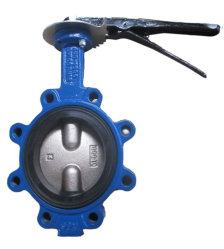 Soft Seat Double Axis Butterfly Valve in Lug Type