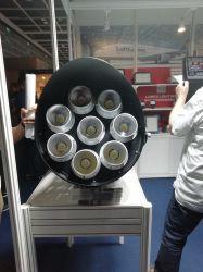 Citizen LED Chips LED Sport Light 500 IP 66
