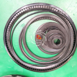 Slurry Pump Spare Parts Shaft E073m /Bearing Assembly/Bearing Seal