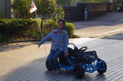 Wholesale 80cc Mini Buggy Go Kart