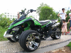 Chinese Wholesale 250cc 3 Wheel Racing ATV for Adult