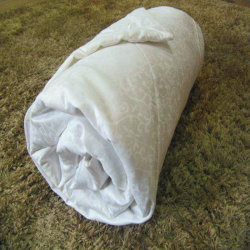 a06982c6a8 Hot Sale 100% Mulberry Silk Quilt
