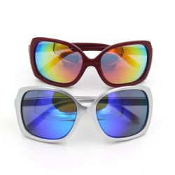 Fashion PC Frame Material Polycarbonater Lense Sunglasses