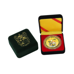 High Quality Custom Made Gold Charm Brass Gold Plated Euro Collectible Mini Sport Medal Coin with Display Box Christmas Gifts Badge Pin Wedding Anniversary