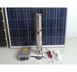 10m 24V DC Solar Water Pump 3cbm Per Hour 192W Lowest Voice