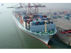 Consolidate Lowest Sea Freight to Tanzania Logistics