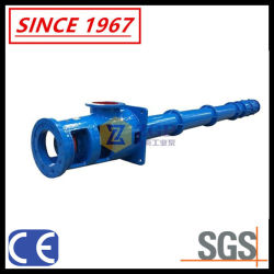 China Vertical Long Shaft Spindle Turbine Pump, Submerged Chemical Water Centrifugal Pump, Submerged Sump Slurry Pump, Semi-Submersible Pump