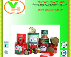 Wholesale Canned Food Supplier Tomato Paste Normal Open&Easy Open Can