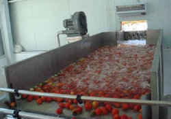 Concentrated Date Juice Processing Machine