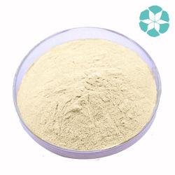 Soy Isoflavones / Soybean Extract / Glycine Max Merr