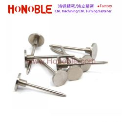 Stainless Steel Flat Head Nail