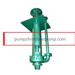 Semi-Submersible Slurry Pumps 65qv-Sp (R)