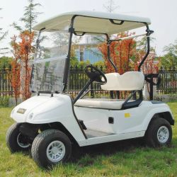 Marshell Brand Ce Approved 2 Seats Electric Golf Cart (DG-C2-5)