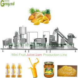 Fruit Juice Beverage Processing Machine