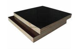 18mm Waterproof Paint Film Faced Plywood for Concrete Formwork