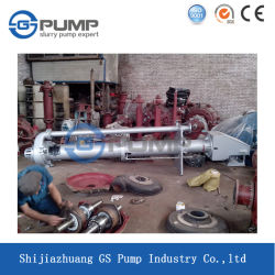 Factory Supply Customized Lengthen Vertical Slurry Pump