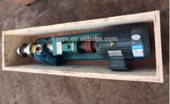 Stainless Steel Sanitary Screw Pump for Food Processing