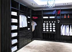 Lovely European Style Modern Design Walk In Closet (Br Cr002)