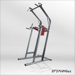 Guangzhou Chin DIP /Leg Raise Sports Products Fitness