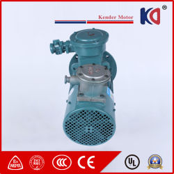 AC Frequency Conversion Timing Electric Motor with Wholesale Prices
