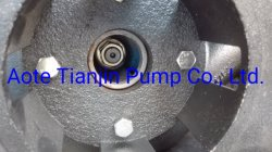 Submersible Slurry Pump for Sewage