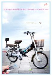 20 Inch Best Price Green City Pedal Assists Electric Bike with Front and Rear Suspension