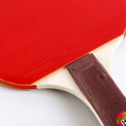 Sport Gifts Colorful Handle Table Tennis Racket Set Manufacturer Wholesale with Best Price