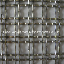 Factory Stainless Steel Crimped Wire Mesh Panel for Exporting