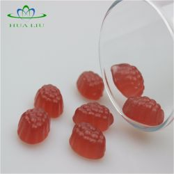 Fruity Animal Shape Gummy Bear