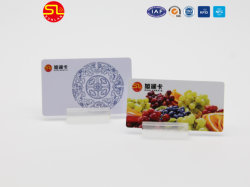 China Supplier Hotel Door Contact IC Key Cards