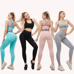 Sport Suits Activewear Set for Fitness Running Athletic Tracksuits