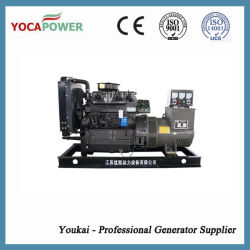 Wholesale Ricardo Engine Open Type Diesel Generator Set