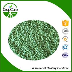 High Quality NPK 24-6-10+2%Mg+0.15b NPK Fertilizer