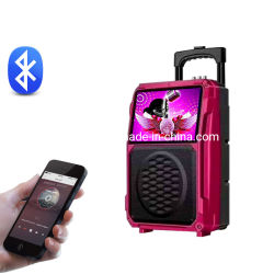 Leisound Wholesale Consumer Electronic 10 Inch Woofer 14 Inch LCD Screen Big Battery Powered Mobile Trolley Video Speaker