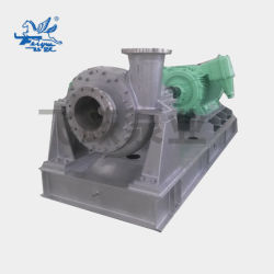 Centrifugal Chemical Electric Mixed Flow Slurry Pump