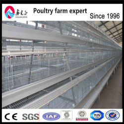 Poultry Control Shed Farm Equipments/Poultry Layer Farming Equipment/Chicken Egg Poultry Farm Equipment