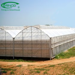 Multi-Span EM Plastic Film Greenhouse flower house for commercial used