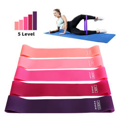 Custom Printed Logo Loops Bandas Resistencia Yoga Sport Set Gym Fitness Equipment Exercise Resistance Bands Set